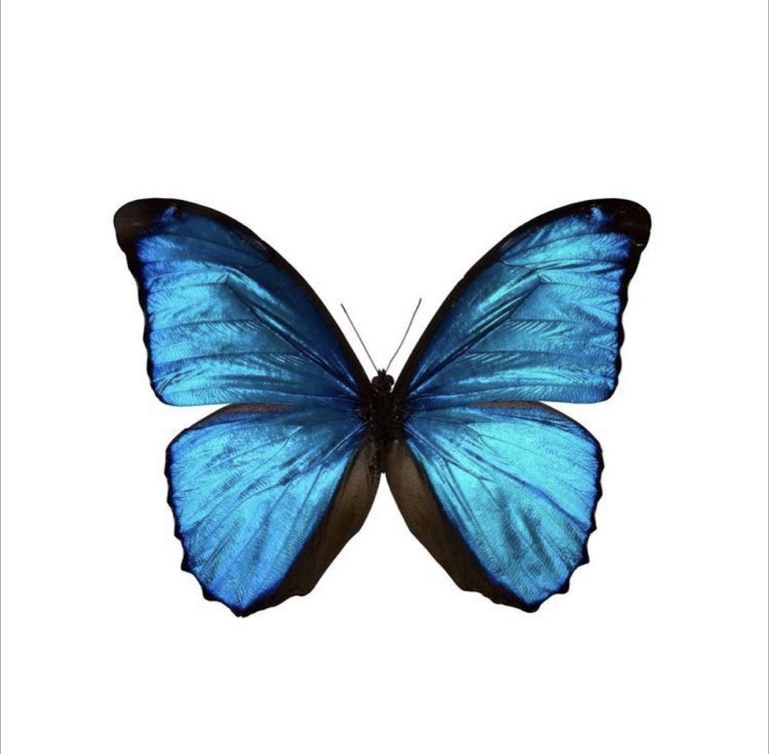 Um texto sobre transformação
