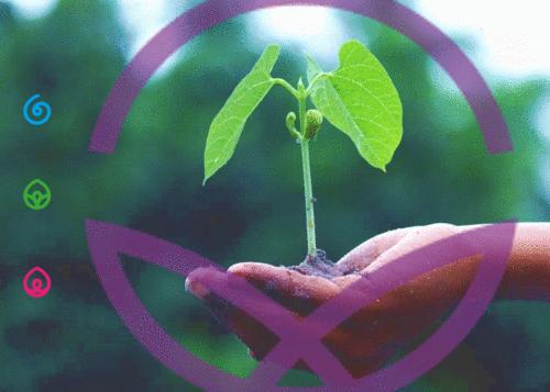 Um novo olhar de conexão com o Agro