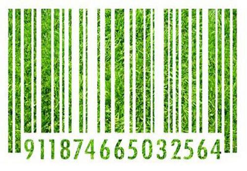 Rotulagem Ambiental – O que os selos e declarações ambientais nos contam sobre o que consumimos